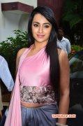 Recent Pic Cinema Actress Trisha Krishnan 7857