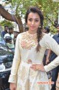 Recent Pictures Trisha Krishnan Cinema Actress 6348