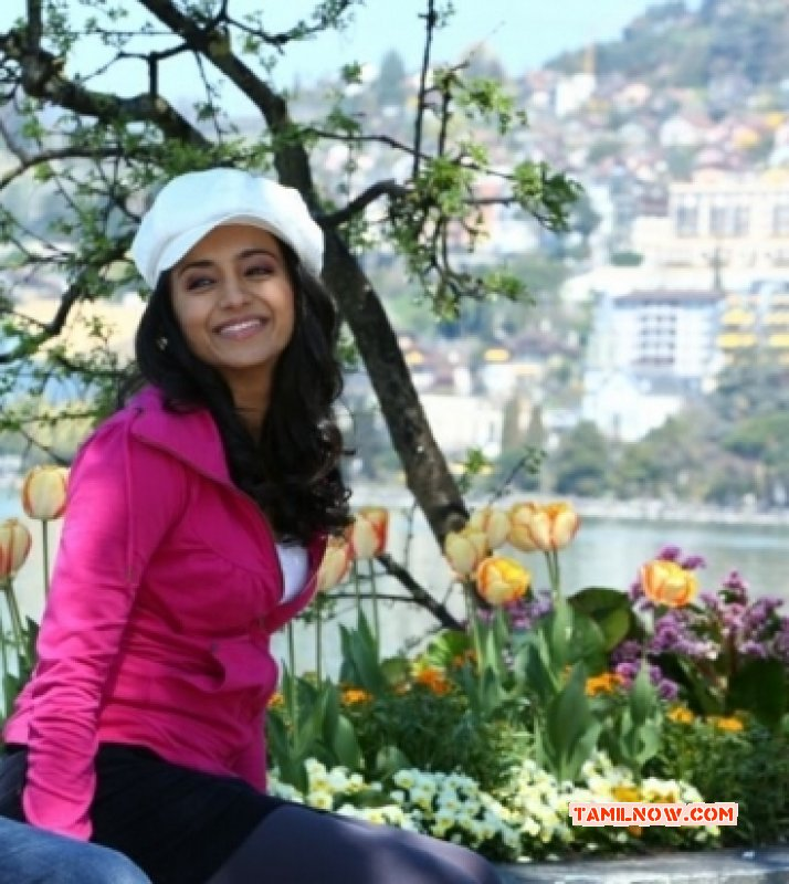 Recent Pictures Trisha Krishnan South Actress 2733