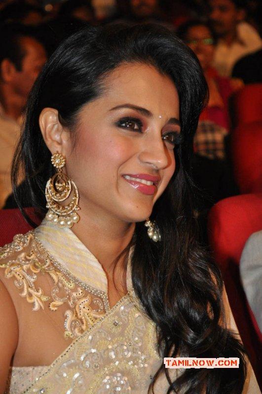 Recent Still Trisha Krishnan Actress 7366