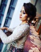South Actress Trisha Krishnan Images 7045