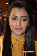 South Actress Trisha Krishnan Pics 9999