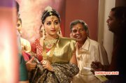 South Actress Trisha Krishnan Recent Still 4668