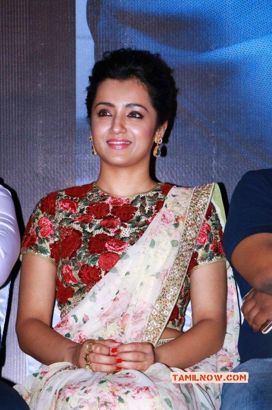 South Actress Trisha Krishnan Sep 2015 Image 2489