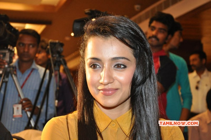 Stills Film Actress Trisha Krishnan 2049