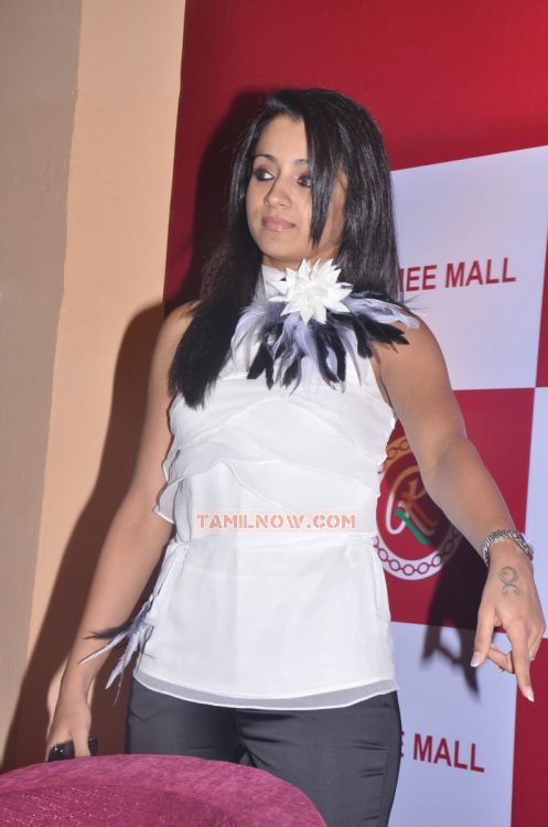 Tamil Actress Trisha Krishnan 3871