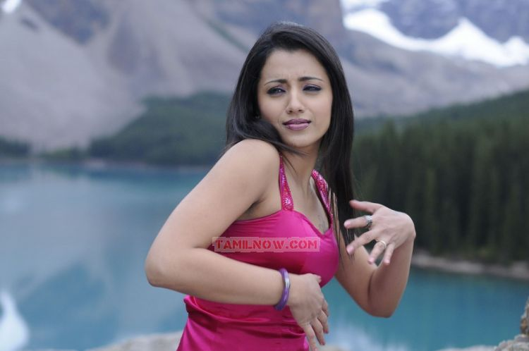 Tamil Actress Trisha Krishnan 8000