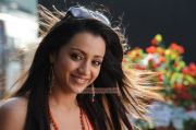 Tamil Actress Trisha Krishnan 8560