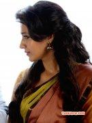 Tamil Actress Trisha Krishnan May 2015 Pictures 7412