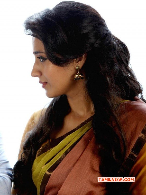 Tamil Actress Trisha Krishnan May 2015 Pictures 7412