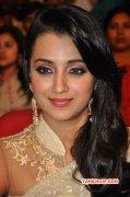 Tamil Actress Trisha Krishnan Stills 8196