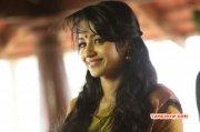 Tamil Heroine Trisha Krishnan 2015 Photos 8593