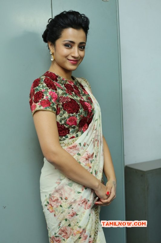 Tamil Heroine Trisha Krishnan Recent Album 9846