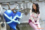 Trisha Krishnan 1127