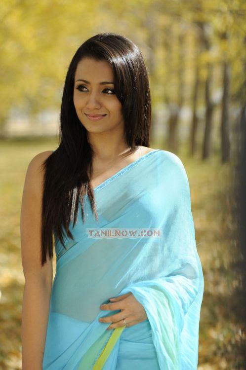 Trisha Krishnan 2776