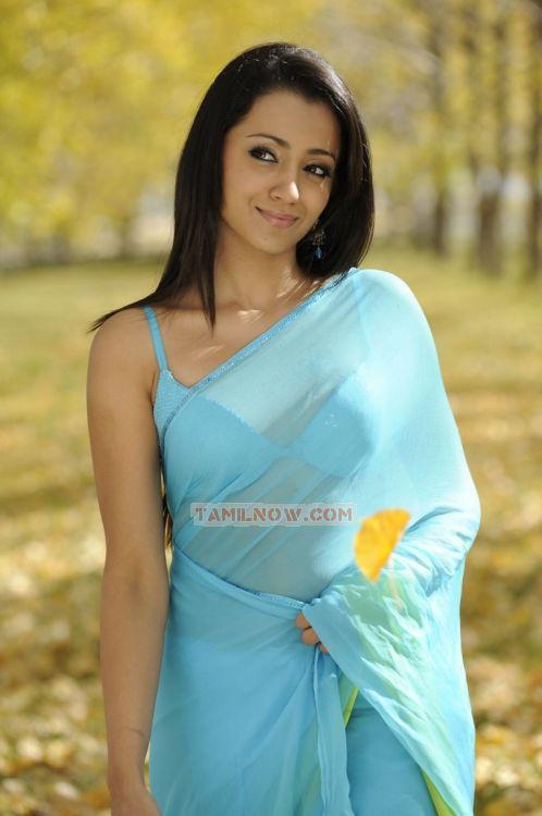 Trisha Krishnan 3382