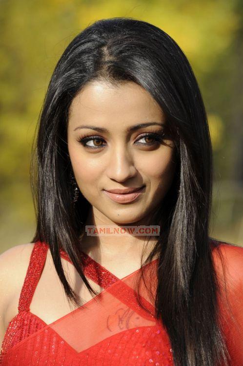 Trisha Krishnan 3511