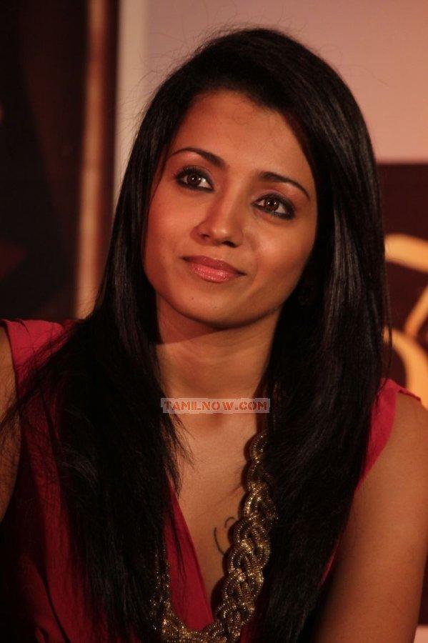 Trisha Krishnan 3643
