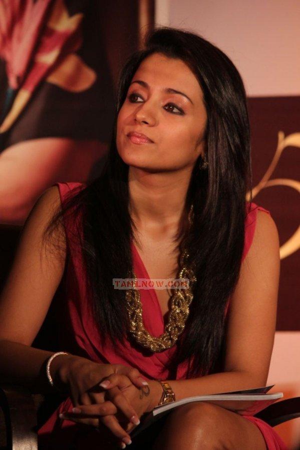 Trisha Krishnan 3644