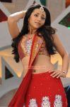 Trisha Krishnan 5189