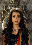Trisha Krishnan 6083