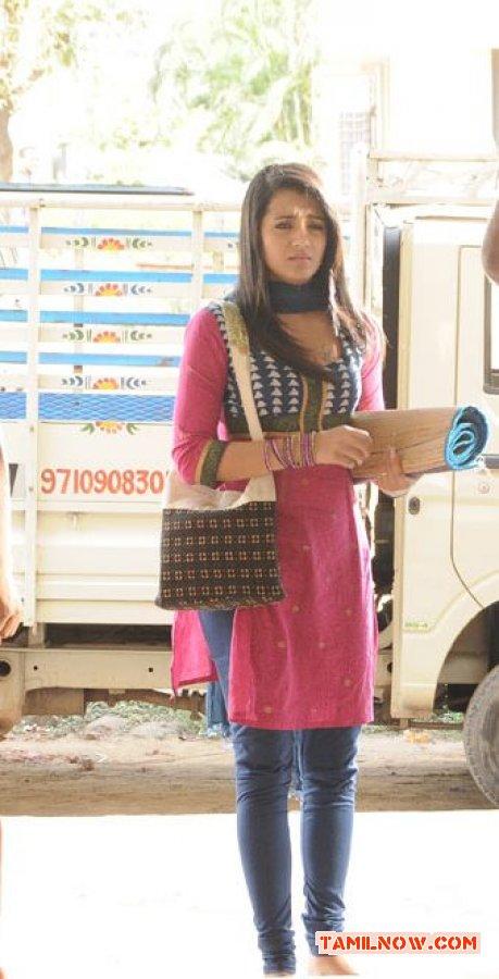 Trisha Krishnan 6535