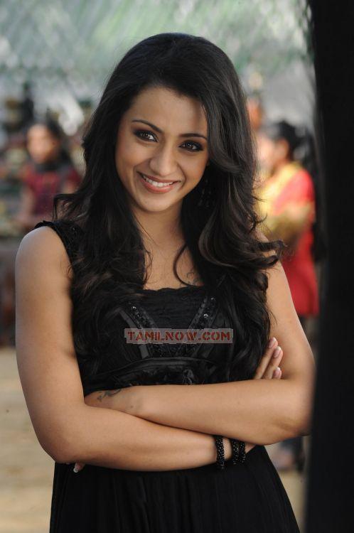Trisha Krishnan 6544