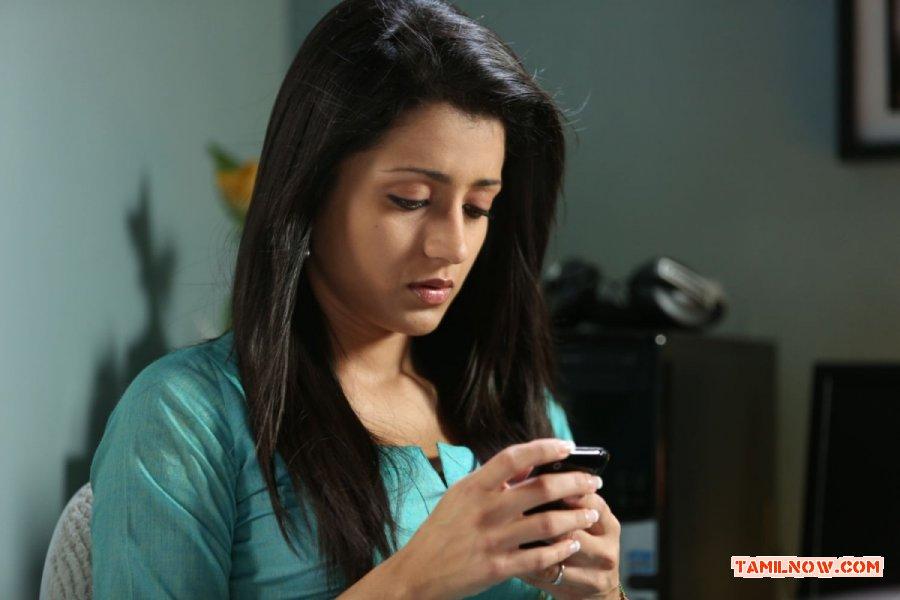 Trisha Krishnan 6736