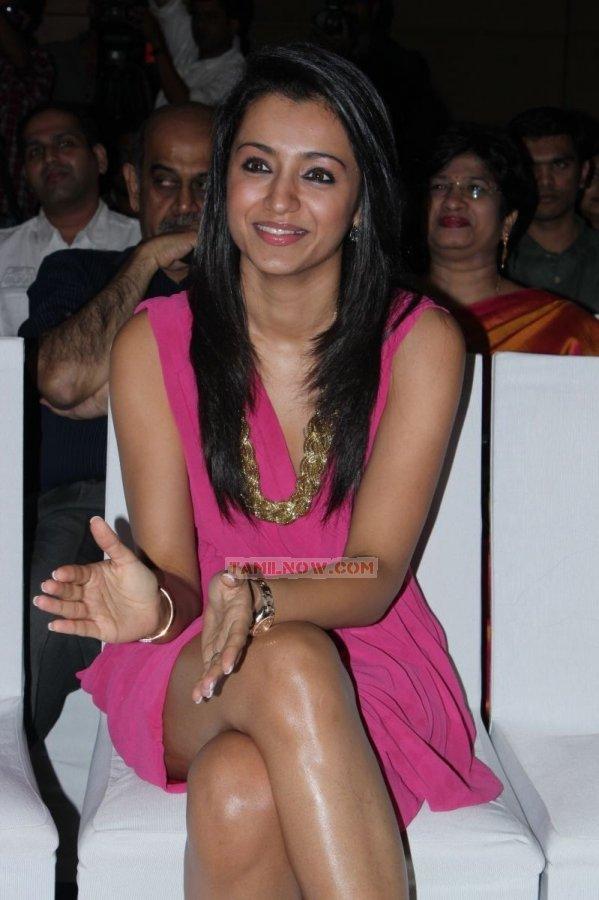 Trisha Krishnan 7856