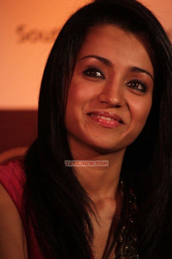 Trisha Krishnan 8557