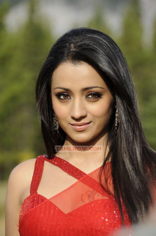 Trisha Krishnan 8578