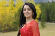 Trisha Krishnan 8585