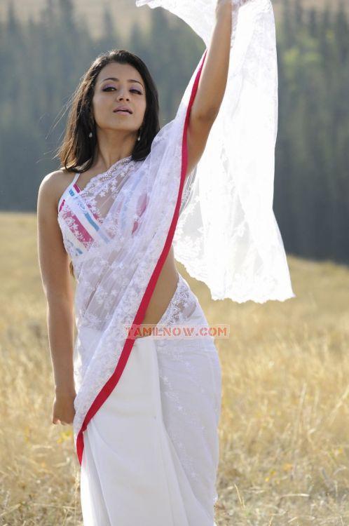 Trisha Krishnan 8909