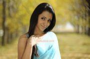 Trisha Krishnan 8929