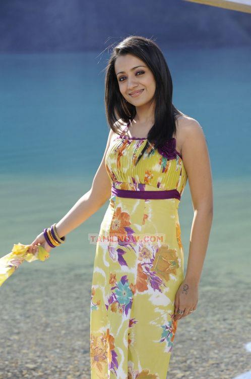 Trisha Krishnan 8945