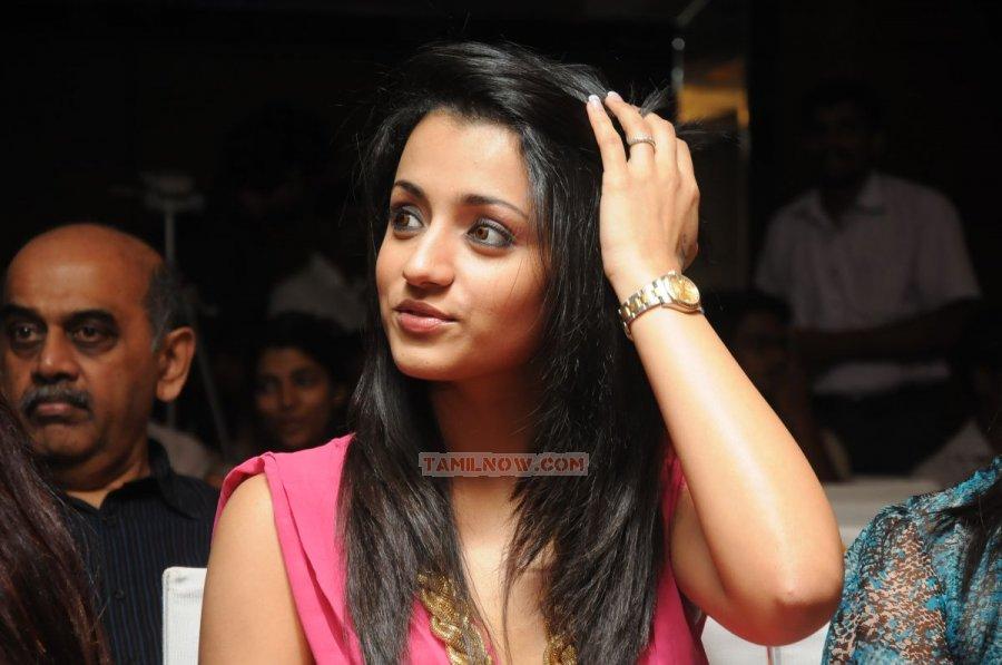 Trisha Krishnan 9611