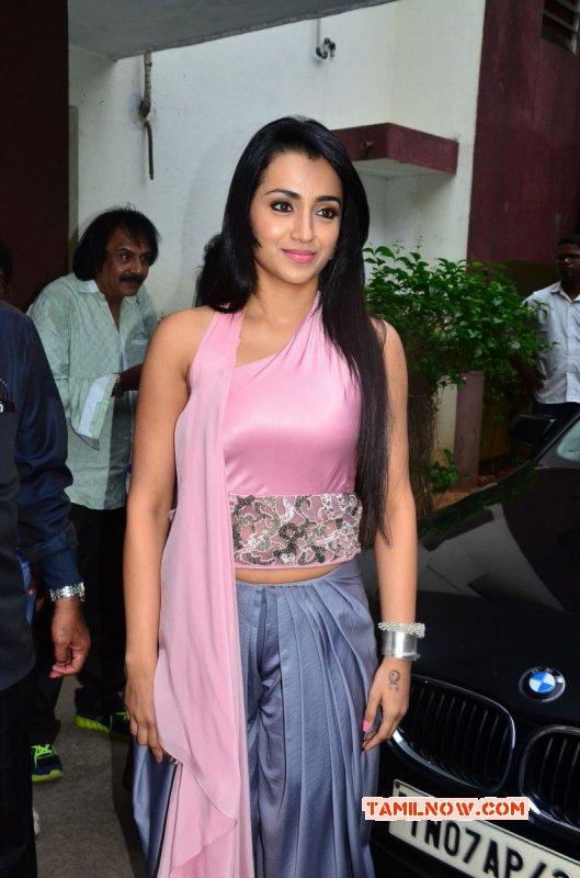 Trisha Krishnan Actress 2015 Pic 7430