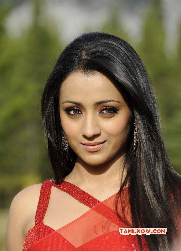 Trisha Krishnan Cinema Actress Latest Albums 2649