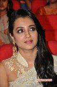 Trisha Krishnan Cinema Actress Pictures 5111