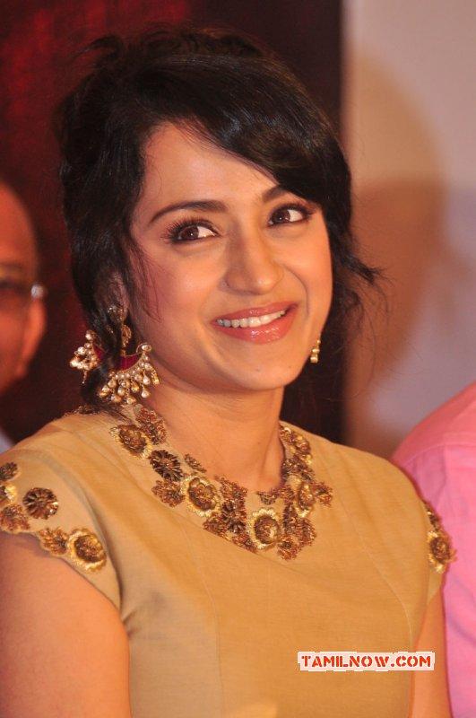Trisha Krishnan Film Actress 2015 Album 3193