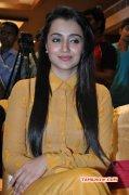 Trisha Krishnan Film Actress Latest Galleries 4297