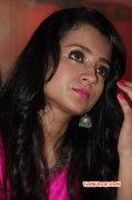 Trisha Krishnan Film Actress Recent Albums 4686