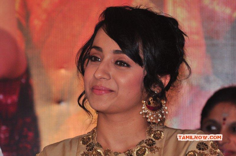 Trisha Krishnan Film Actress Sep 2015 Pics 5029