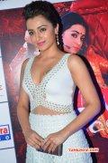 Trisha Krishnan Film Actress Stills 6090