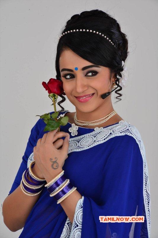 Trisha Krishnan Indian Actress Aug 2015 Wallpaper 7368