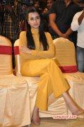 Trisha Krishnan Indian Actress New Stills 246