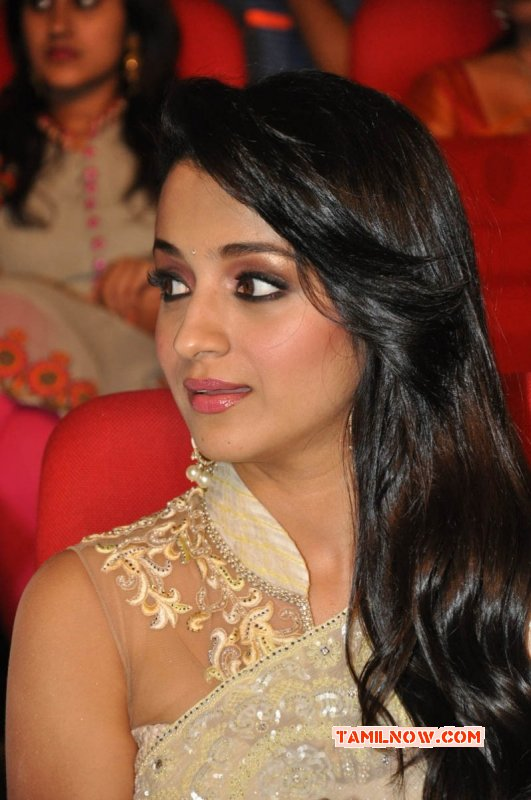 Trisha Krishnan Movie Actress 2015 Still 6964
