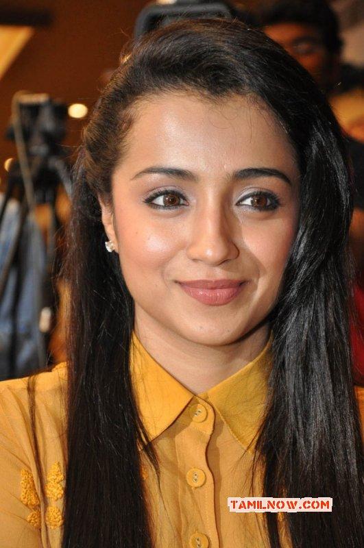 Trisha Krishnan Movie Actress Images 5969