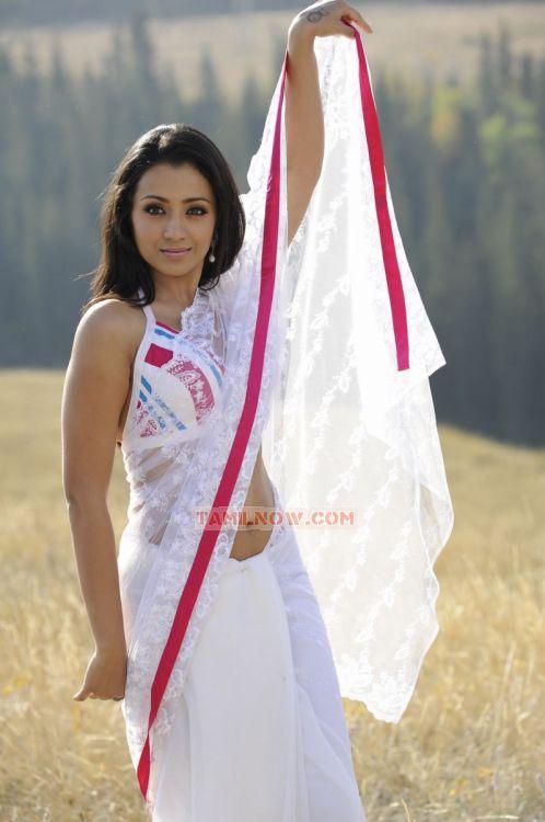 Trisha Krishnan Photos 1083