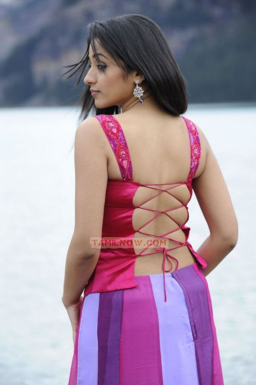 Trisha Krishnan Photos 3294
